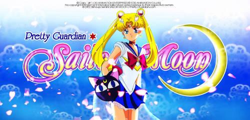 Sailor Moon Artbook 2013 by JackoWcastillo