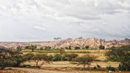 Yemen - Abyan