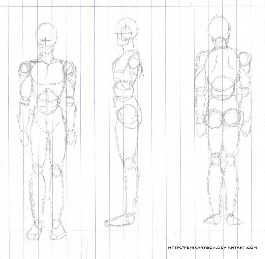 Único Dibujo De La Anatomía Del Hombre Embellecimiento - Anatomía de ...