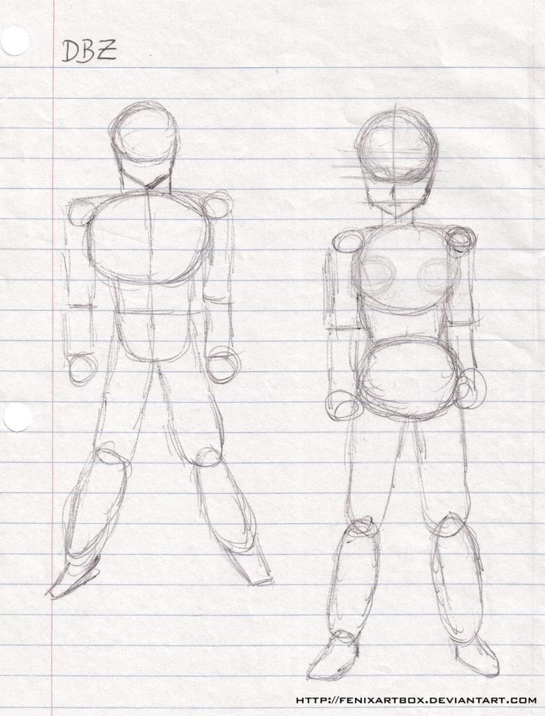 anatomia dbz mujer/hombre by FenixArtBox on DeviantArt