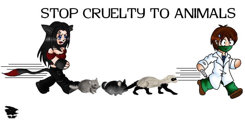 essay on - stop cruelty to animals 10 debated acts of animal cruelty^10 debated acts of animal cruelty^animal rights are widely known and accepted in western culture but despite this there.