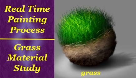 Material Study 01 Grass by ewmh1