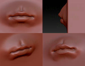 A sculpting test of lips