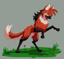 Guyra the Maned Wolf