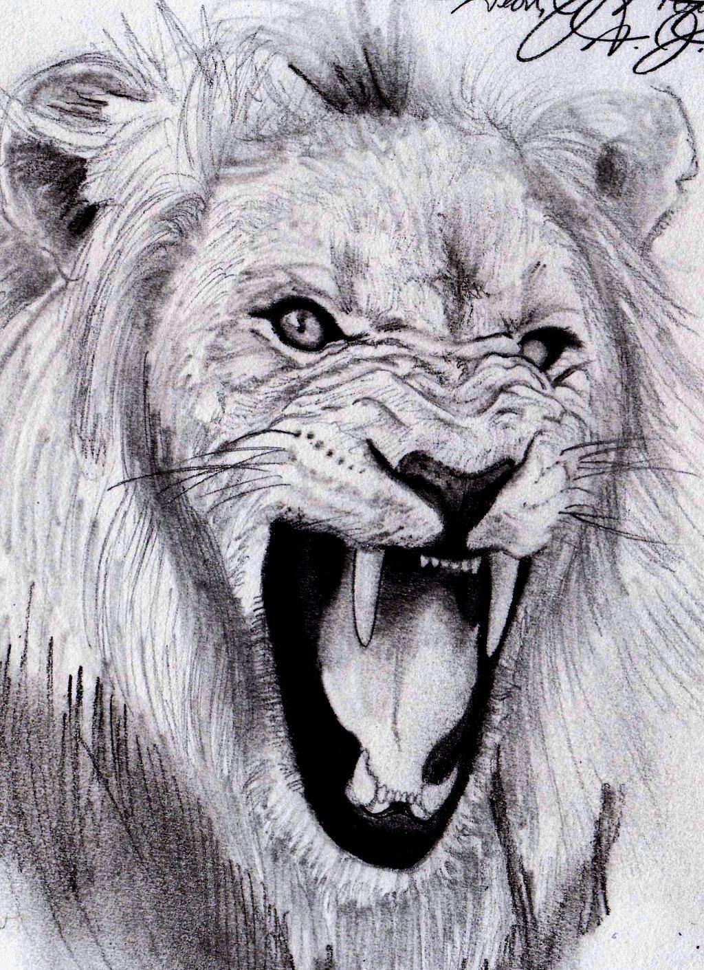 Lion Roar by dmistreet on DeviantArt