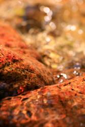 Skin of Water by Cellshots