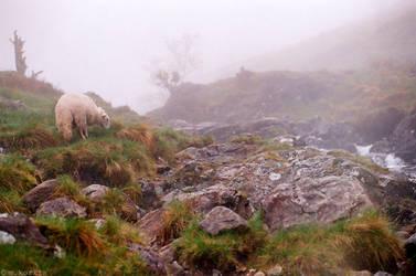 Snowdonia by yama-dharma