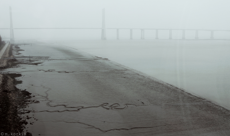 Vasco da Gama Bridge by yama-dharma