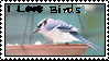 I love Birds-FIRST STAMP by Shamrock733