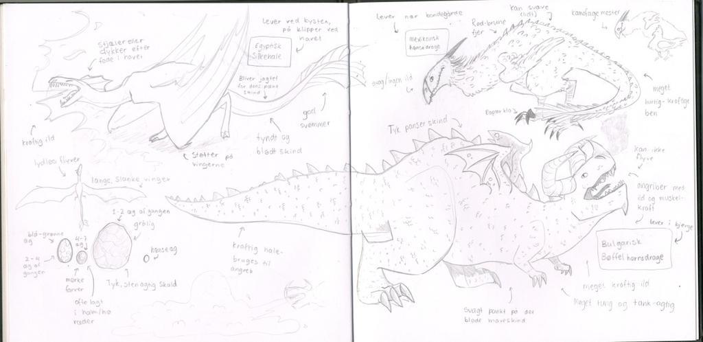 Dragon studies by Thea0605