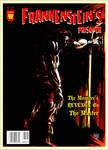 Frankenstein's Prisoner Cover by masuros