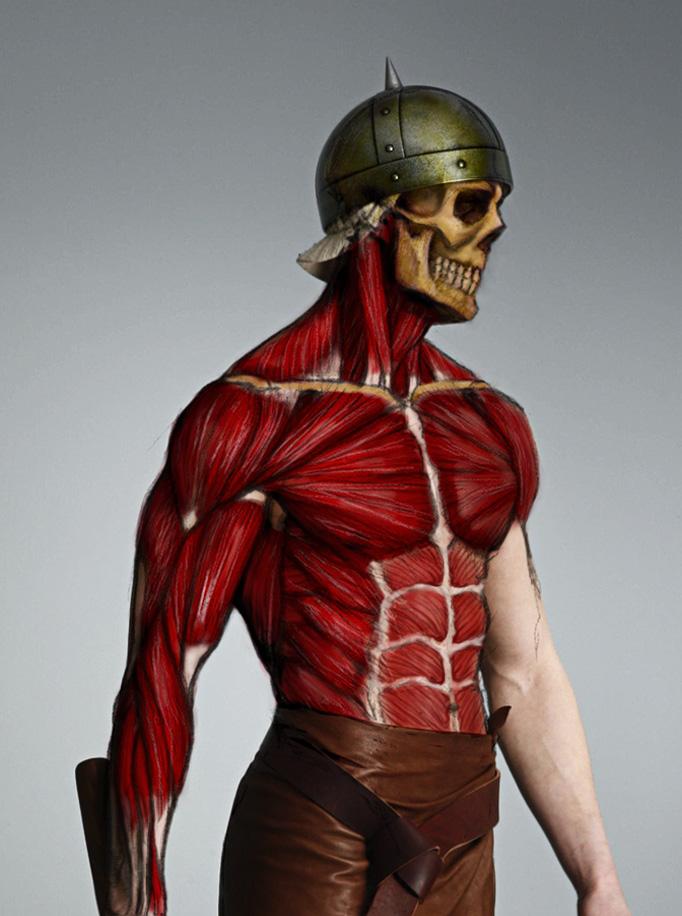 Anatomy Study Torso By Mojette On Deviantart