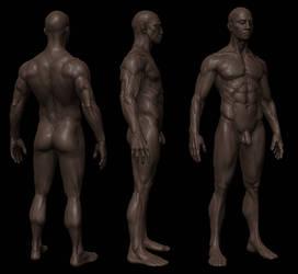 Anatomy study ZB3 shot 2 by mojette