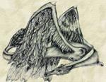 dragon bird thing...