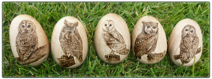 Wooden Owl Eggs
