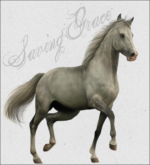Saving Grace Ranch Saving_grace_ad_by_guardianswish-d5t009a