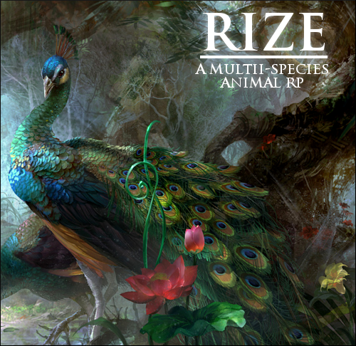 Rize - A Multi-Species Animal RP Rize_ad_by_guardianswish-d710r1e