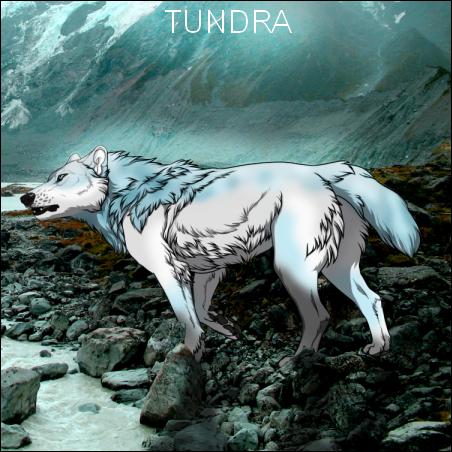 Tundra [A Multi Species Animal RP] Tundra_ad_by_guardianswish-d7zdpqw