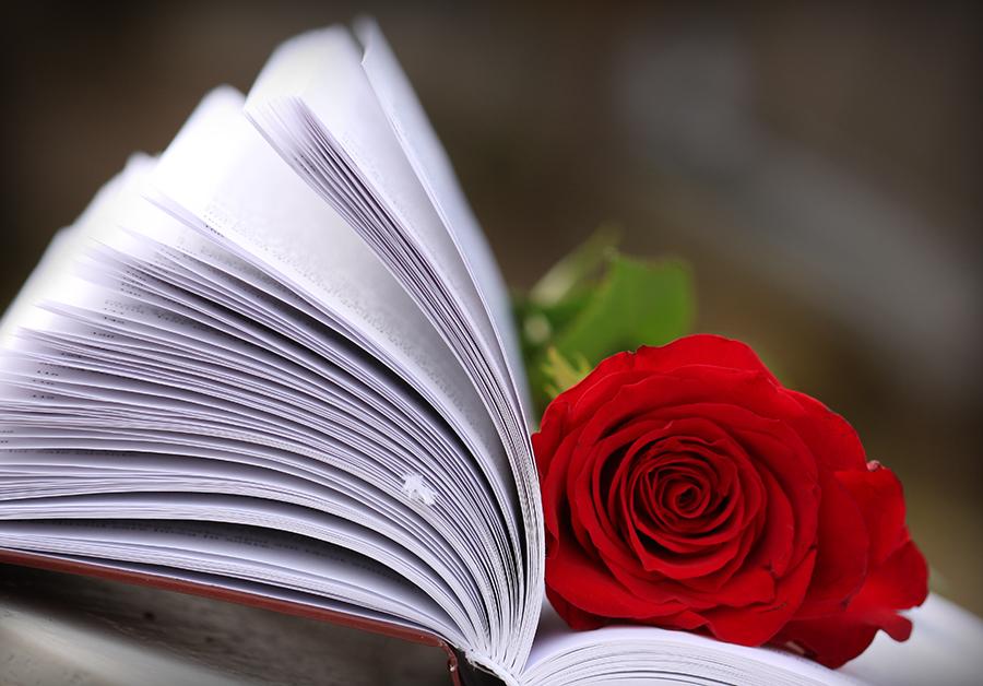 Book  - Page 3 4c298fea5beed2fee1b763cc62360bd5-d4se5tm