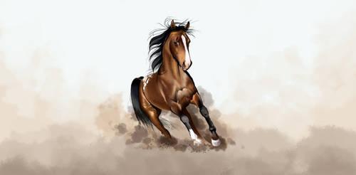 war pony by valerimarinov