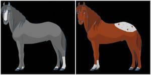 Wild Horse Adopts | Open