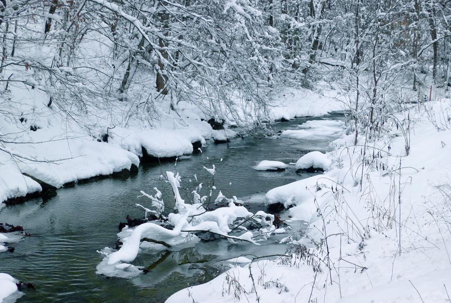 Snow banks.L1010127 by harrietsfriend
