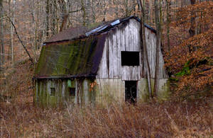 Field barn.L1010048 by harrietsfriend