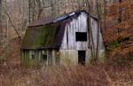 Field barn.L1010048