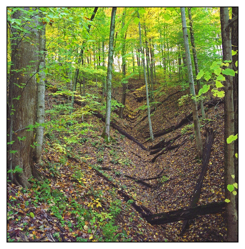 Ravine, wide.img215, with story by harrietsfriend