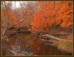 Helmsburg creekDSCN2348da by harrietsfriend