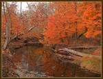 Helmsburg creekDSCN2348da