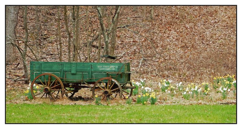 Wagon in spring.DSCN2599, with story by harrietsfriend