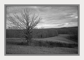 Overlook bnw. L1001275, with story by harrietsfriend