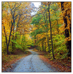 Fall on the road. img475, with story by harrietsfriend