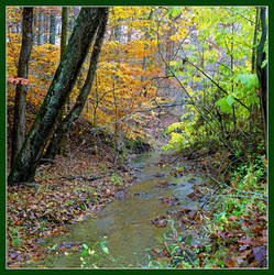 Creek in the fall. img399, with story by harrietsfriend
