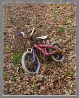 Kids bike. DSCN0858, with story by harrietsfriend