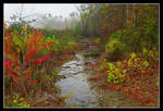 Creek. L1020570, with story by harrietsfriend