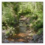 Creek. DSCN5550, with story by harrietsfriend