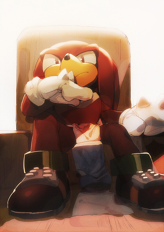 Knuckles by aoki6311
