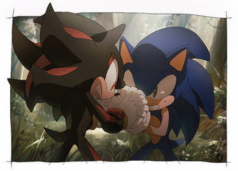 sonic and shadow by aoki6311