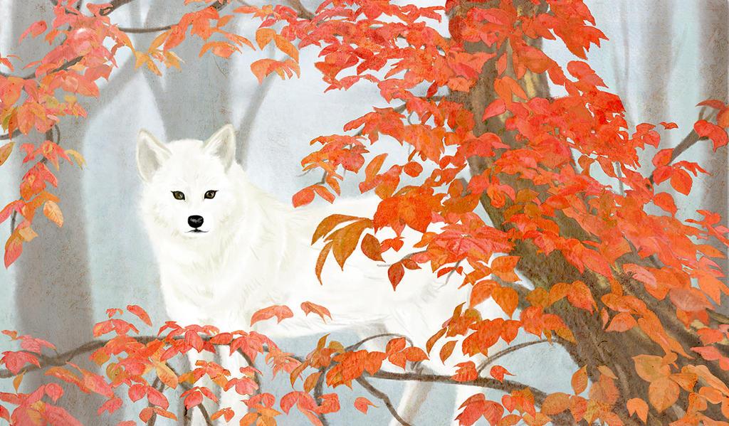 White Wolf by K-Hiroko