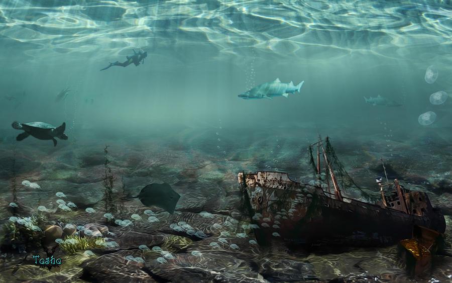On The Seabed By Tasha507 On Deviantart