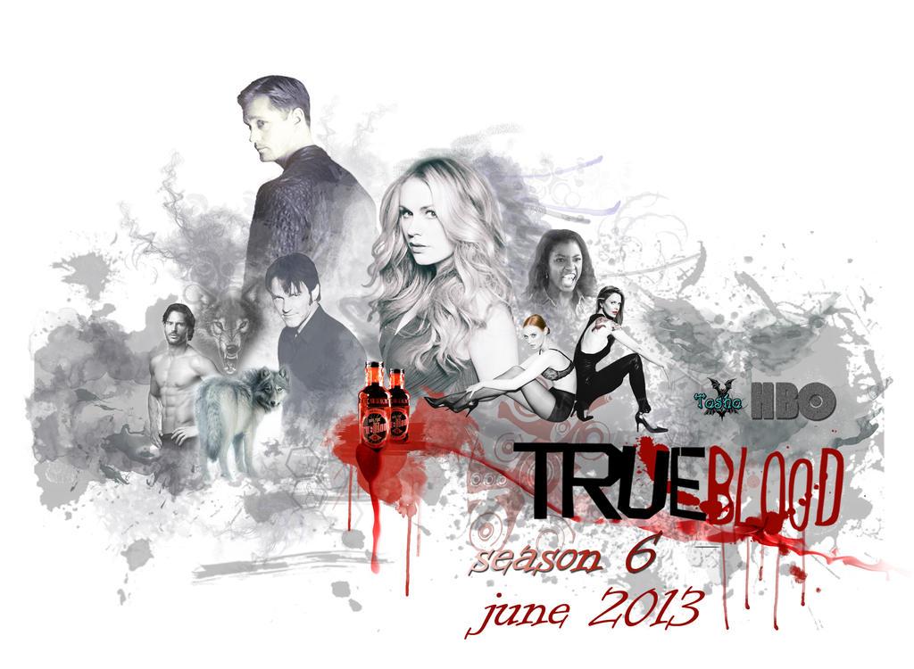 True Blood Poster 6 Season By Tasha507