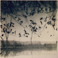 autumn by andrewpershin
