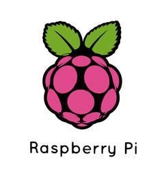 Raspberry Pi 3d Logo