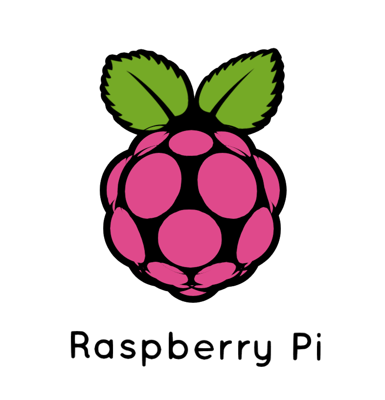 Raspberry pi logo download