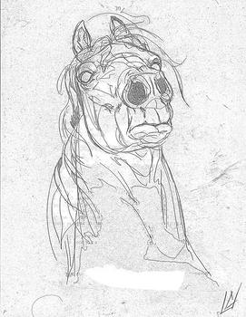 The Prince's Stallion - Rough