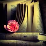 Rose On Book . II