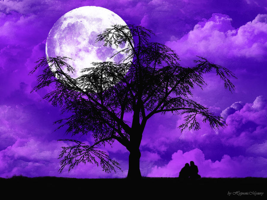 Wallpaper Love Violet : Violet Night Wallpaper by HypnoticMystery on DeviantArt