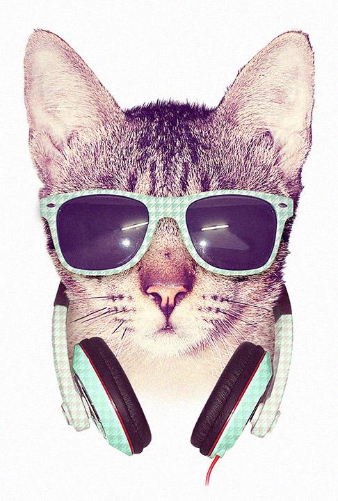 COOL CAT by dzeri